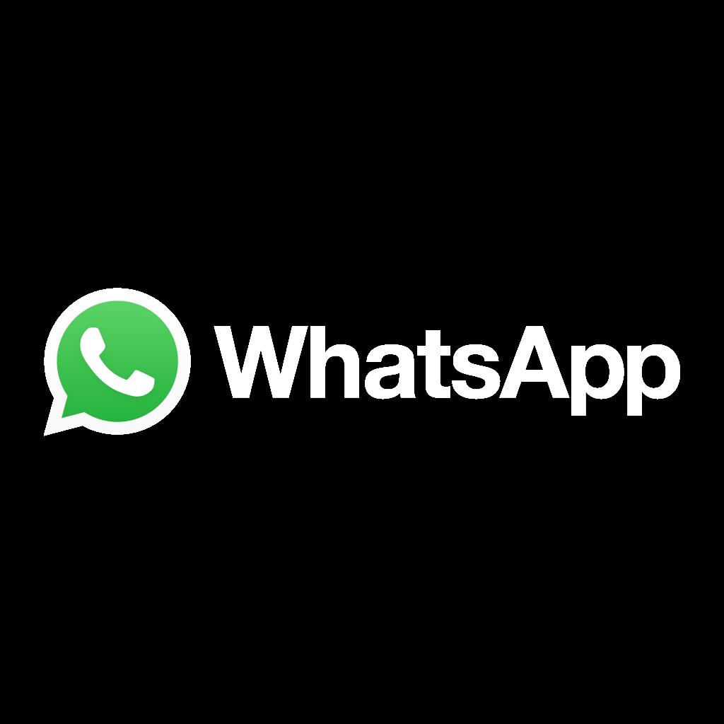 logo whatsapp png colorido verde