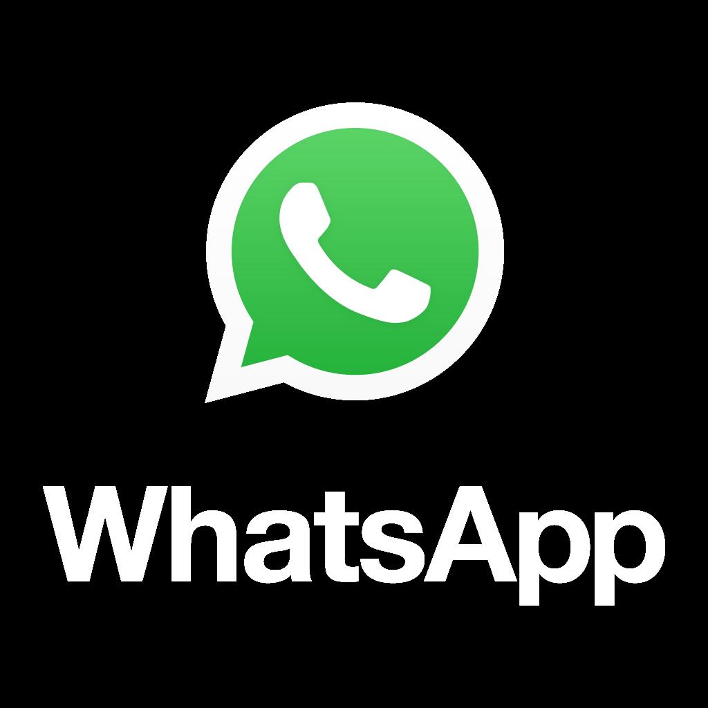 logo whatsapp colorido com nome png