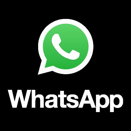 whatsapp logo 512x512 colorido com nome